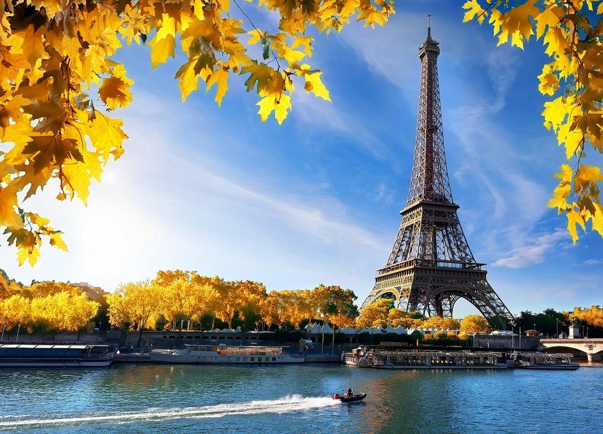 Du học Pháp nên học ngành gì